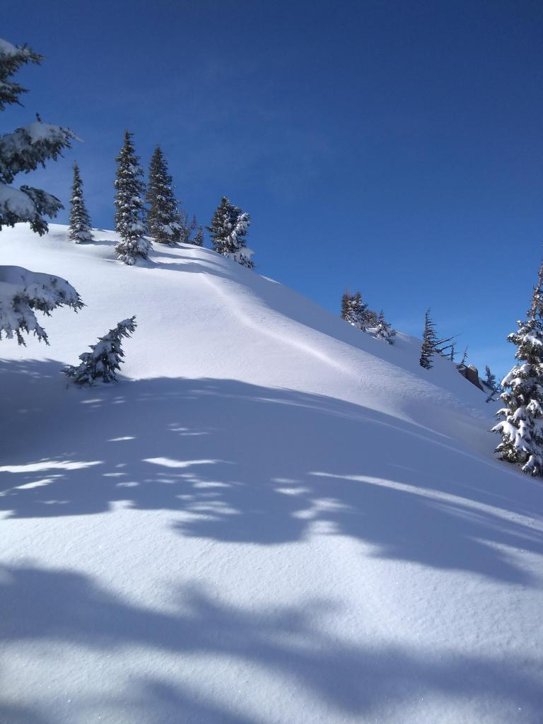 "Wind pillow above NE <a href=""https://www.sierraavalanchecenter.org/avalanche-terms/aspect"" title=""The compass direction a slope faces (i.e. North, South, East, or West.)"" class=""lexicon-term"">aspect</a> terrain at the summit."