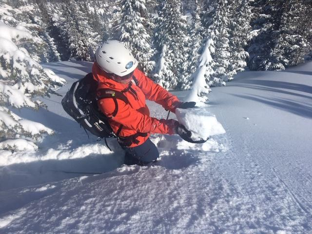 "15 cm <a href=""https://www.sierraavalanchecenter.org/avalanche-terms/wind-slab"" title=""A cohesive layer of snow formed when wind deposits snow onto leeward terrain. Wind slabs are often smooth and rounded and sometimes sound hollow."" class=""lexicon-term"">wind slab</a> at treeline. Ski pen thigh deep."