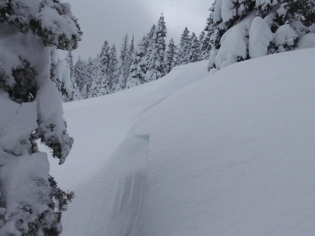 "<a href=""https://www.sierraavalanchecenter.org/avalanche-terms/wind-loading"" title=""The added weight of wind drifted snow."" class=""lexicon-term"">Wind loaded</a> features that were unreactive to skier weight."