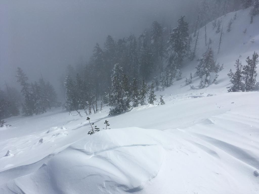 """Old <a href=""""/avalanche-terms/avalanche"""" title=""""A mass of snow sliding, tumbling, or flowing down an inclined surface."""" class=""""lexicon-term"""">avalanche</a> debris from a <a href=""""/avalanche-terms/cornice"""" title=""""A mass of snow deposited by the wind, often overhanging, and usually near a sharp terrain break such as a ridge. Cornices can break off unexpectedly and should be approached with caution."""" class=""""lexicon-term"""">cornice</a> fall that was partially covered by new snow"""