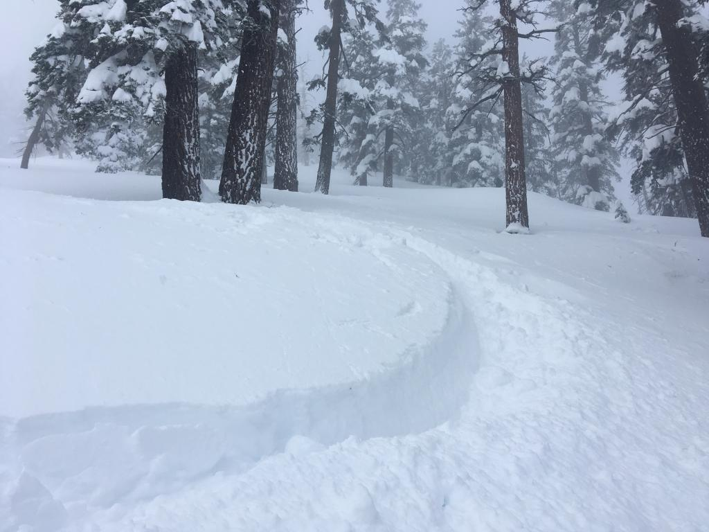 Deep and soft new snow