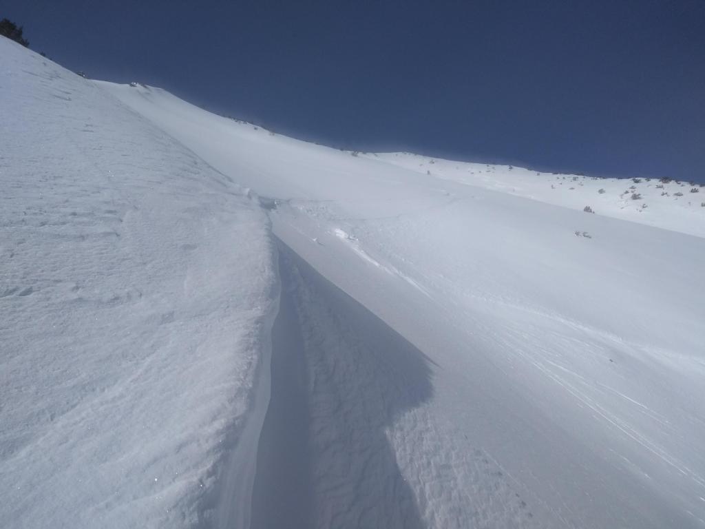 "<a href=""https://www.sierraavalanchecenter.org/avalanche-terms/crown-face"" title=""The top fracture surface of a slab avalanche. Usually smooth, clean cut, and angled 90 degrees to the bed surface."" class=""lexicon-term"">Crown</a> refilled by 6 inches of storm snow. Entrance tracks faintly visible from upper right."