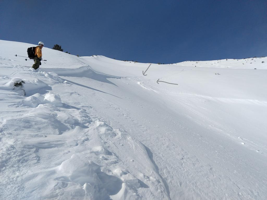 "<a href=""https://www.sierraavalanchecenter.org/avalanche-terms/crown-face"" title=""The top fracture surface of a slab avalanche. Usually smooth, clean cut, and angled 90 degrees to the bed surface."" class=""lexicon-term"">Crown</a> with ski/snowboard tracks entering. Drawn arrows pointing to two tracks."