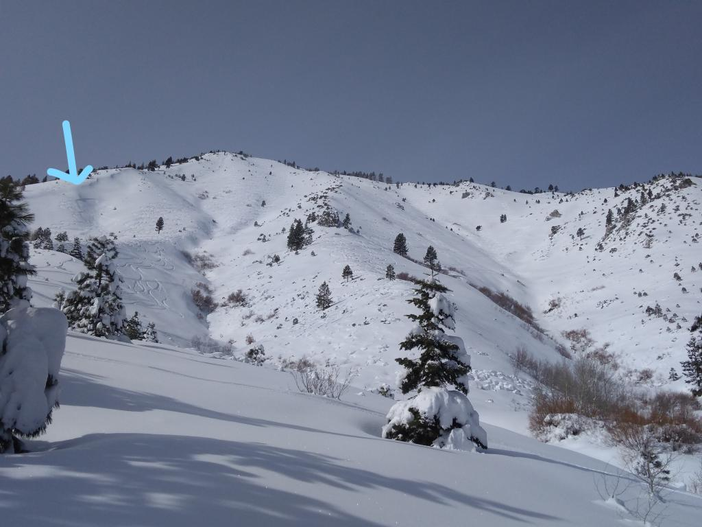 "<a href=""https://www.sierraavalanchecenter.org/avalanche-terms/avalanche"" title=""A mass of snow sliding, tumbling, or flowing down an inclined surface."" class=""lexicon-term"">Avalanche</a> below the drawn arrow."
