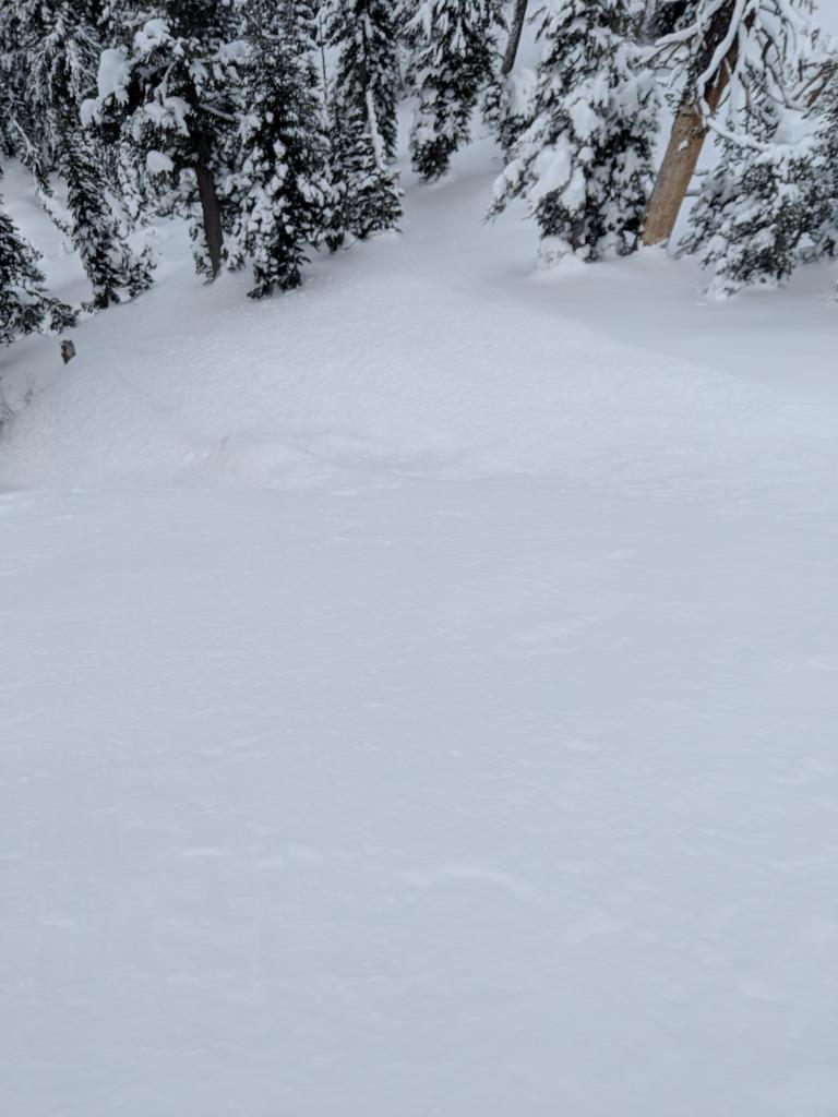 "<a href=""https://www.sierraavalanchecenter.org/avalanche-terms/runout-zone"" title=""The portion of an avalanche path where the debris typically comes to rest."" class=""lexicon-term"">Runout</a>"