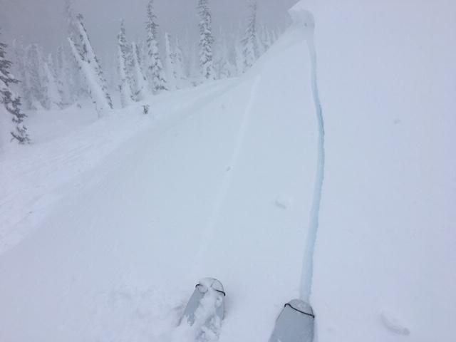 "Reactive <a href=""https://www.sierraavalanchecenter.org/avalanche-terms/wind-slab"" title=""A cohesive layer of snow formed when wind deposits snow onto leeward terrain. Wind slabs are often smooth and rounded and sometimes sound hollow."" class=""lexicon-term"">wind slab</a> <a href=""https://www.sierraavalanchecenter.org/avalanche-terms/avalanche"" title=""A mass of snow sliding, tumbling, or flowing down an inclined surface."" class=""lexicon-term"">avalanche</a> intentionally <a href=""https://www.sierraavalanchecenter.org/avalanche-terms/trigger"" title=""A disturbance that initiates fracture within the weak layer causing an avalanche. In 90 percent of avalanche accidents, the victim or someone in the victims party triggers the avalanche."" class=""lexicon-term"">triggered</a> by ski kick.  N <a href=""https://www.sierraavalanchecenter.org/avalanche-terms/aspect"" title=""The compass direction a slope faces (i.e. North, South, East, or West.)"" class=""lexicon-term"">aspect</a>, 8600', <a href=""https://www.sierraavalanchecenter.org/avalanche-terms/wind-loading"" title=""The added weight of wind drifted snow."" class=""lexicon-term"">wind loaded</a> 35 degree slope.  D1 R4, 100' wide x 50' downslope."