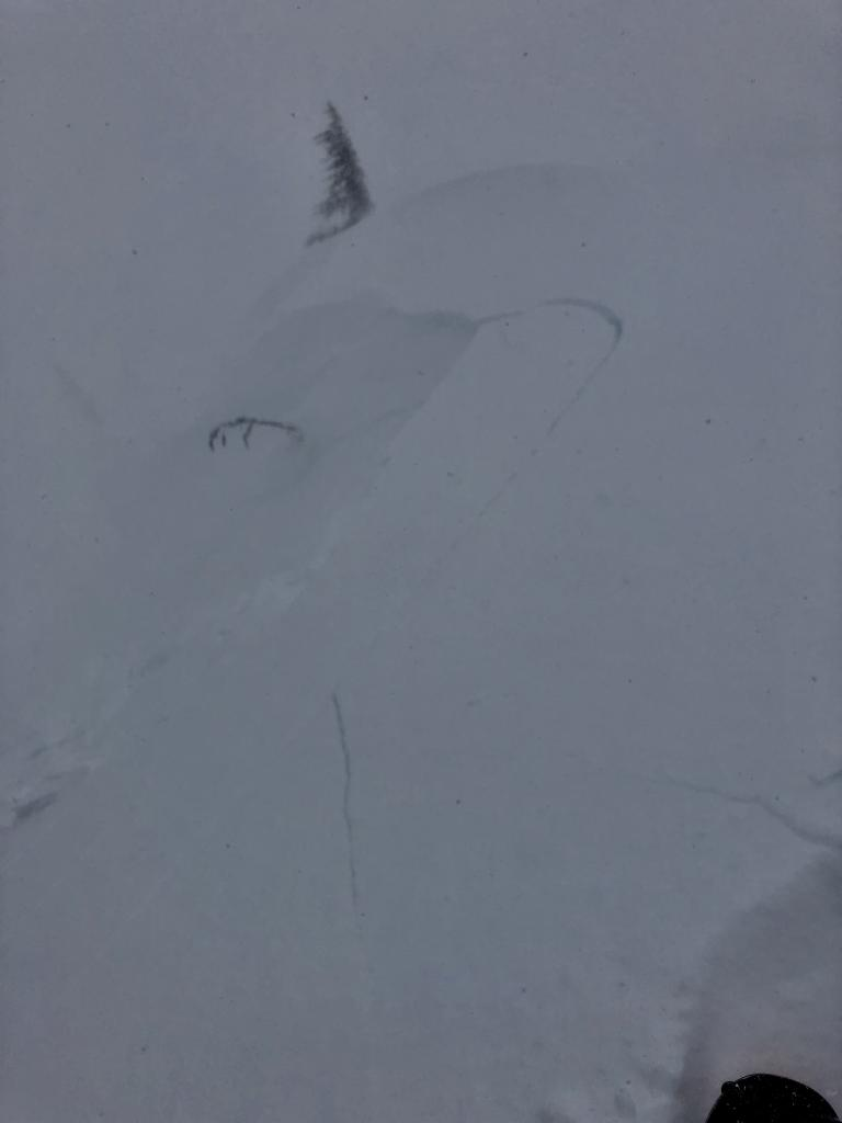 """Low vis photo of shooting cracks and small <a href=""""/avalanche-terms/wind-slab"""" title=""""A cohesive layer of snow formed when wind deposits snow onto leeward terrain. Wind slabs are often smooth and rounded and sometimes sound hollow."""" class=""""lexicon-term"""">wind slab</a> <a href=""""/avalanche-terms/avalanche"""" title=""""A mass of snow sliding, tumbling, or flowing down an inclined surface."""" class=""""lexicon-term"""">avalanche</a>, skier <a href=""""/avalanche-terms/trigger"""" title=""""A disturbance that initiates fracture within the weak layer causing an avalanche. In 90 percent of avalanche accidents, the victim or someone in the victims party triggers the avalanche."""" class=""""lexicon-term"""">triggered</a>"""