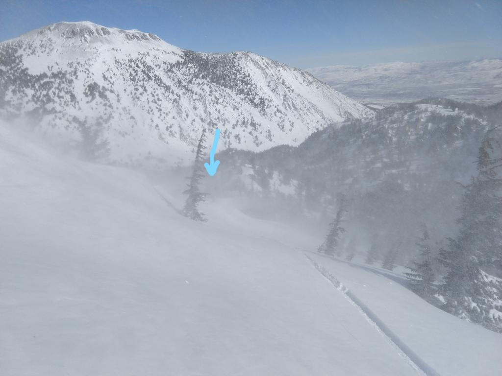 Blowing snow along a sub-ridge of Tamarack Peak. The arrow is pointing to a person standing on the ridge.