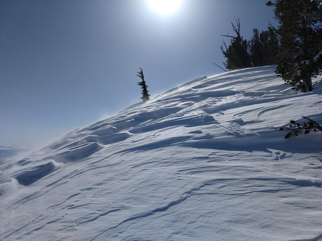 Wind-scoured features along a ridge.