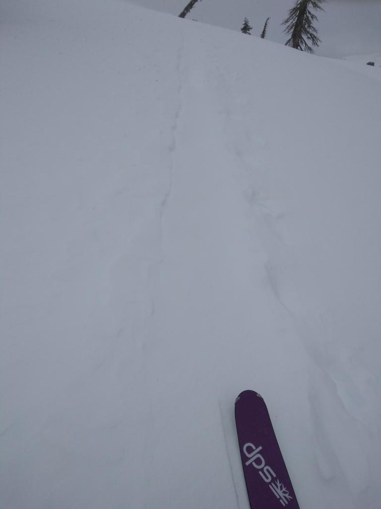 """<a href=""""https://www.sierraavalanchecenter.org/avalanche-terms/skin-track"""" title=""""Backcountry skiers and some snowboarders ascend slopes using climbing skins attached to the bottom of their skis."""" class=""""lexicon-term"""">Skin track</a> refill in above treeline terrain."""
