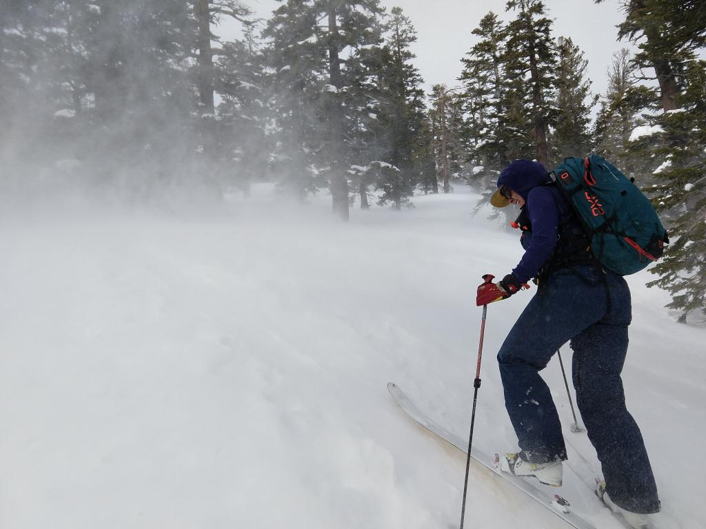 Strong winds were moving snow in below treeline areas