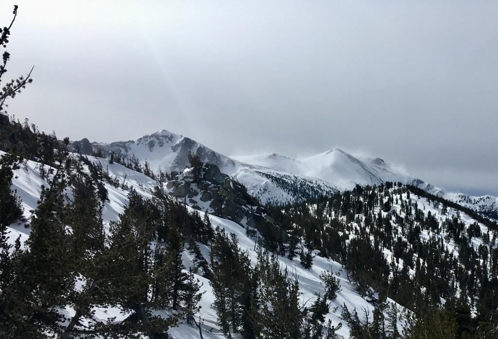 Intense snow transport over Freel Peak