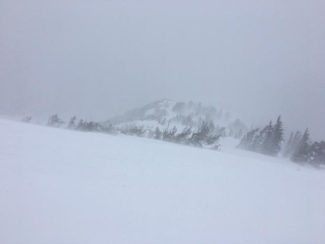 Strong SW winds with intense snow transport provided blizzard conditions near the summit.