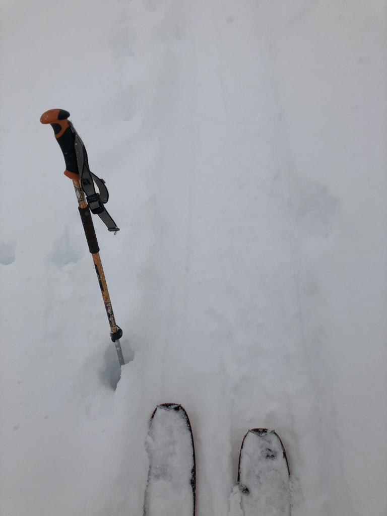 """<a href=""""https://www.sierraavalanchecenter.org/avalanche-terms/skin-track"""" title=""""Backcountry skiers and some snowboarders ascend slopes using climbing skins attached to the bottom of their skis."""" class=""""lexicon-term"""">Skin track</a>, ski pen 10-15cm, ski pole pen 110cm"""