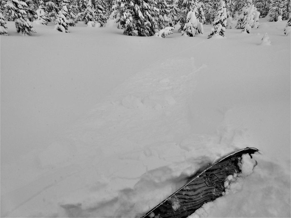 """Refrigerator sized <a href=""""https://www.sierraavalanchecenter.org/avalanche-terms/cornice"""" title=""""A mass of snow deposited by the wind, often overhanging, and usually near a sharp terrain break such as a ridge. Cornices can break off unexpectedly and should be approached with caution."""" class=""""lexicon-term"""">cornice</a> dropped onto a wind-<a href=""""https://www.sierraavalanchecenter.org/avalanche-terms/loading"""" title=""""The addition of weight on top of a snowpack, usually from precipitation, wind drifting, or a person."""" class=""""lexicon-term"""">loaded</a> test slope with no results."""