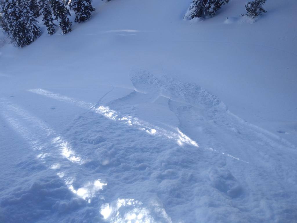 """Very small loose dry on NE <a href=""""https://www.sierraavalanchecenter.org/avalanche-terms/aspect"""" title=""""The compass direction a slope faces (i.e. North, South, East, or West.)"""" class=""""lexicon-term"""">aspect</a>, 46 degree slope angle, below treeline terrain."""