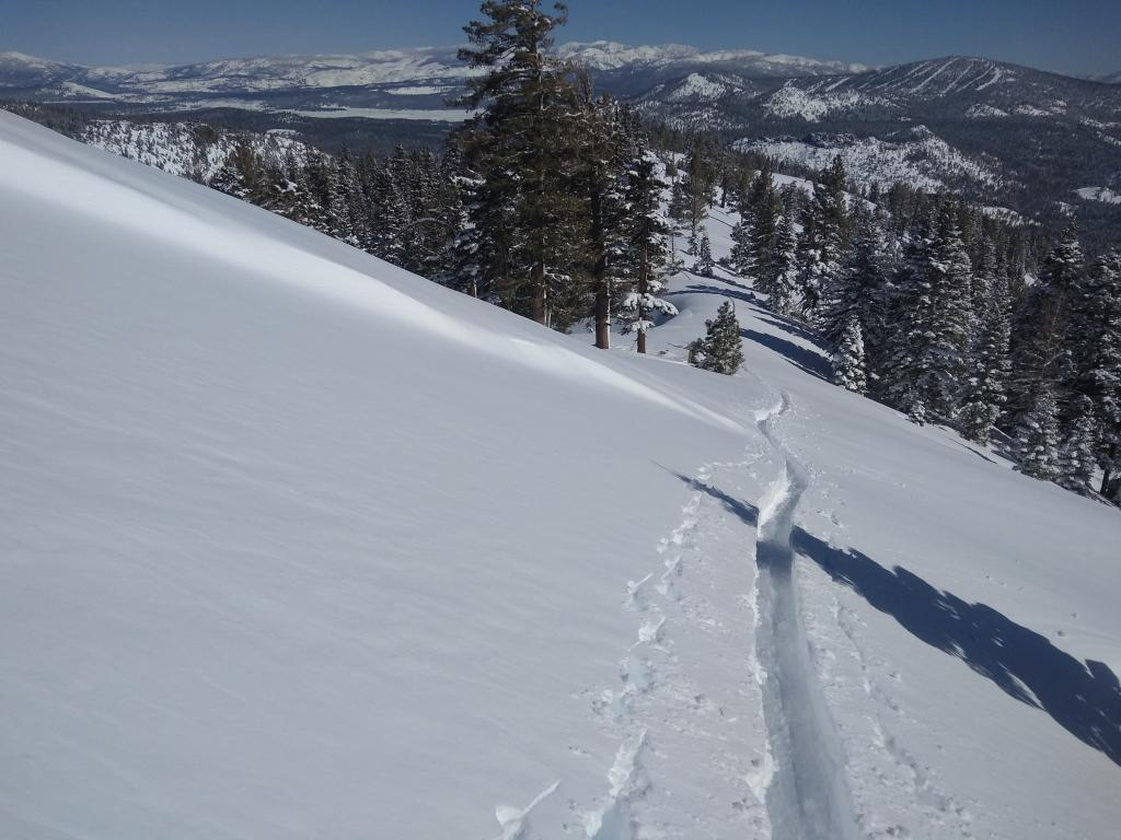 """<a href=""""https://www.sierraavalanchecenter.org/avalanche-terms/skin-track"""" title=""""Backcountry skiers and some snowboarders ascend slopes using climbing skins attached to the bottom of their skis."""" class=""""lexicon-term"""">Skinning</a> through this S <a href=""""https://www.sierraavalanchecenter.org/avalanche-terms/aspect"""" title=""""The compass direction a slope faces (i.e. North, South, East, or West.)"""" class=""""lexicon-term"""">aspect</a> <a href=""""https://www.sierraavalanchecenter.org/avalanche-terms/wind-slab"""" title=""""A cohesive layer of snow formed when wind deposits snow onto leeward terrain. Wind slabs are often smooth and rounded and sometimes sound hollow."""" class=""""lexicon-term"""">wind slab</a> produced no cracking."""
