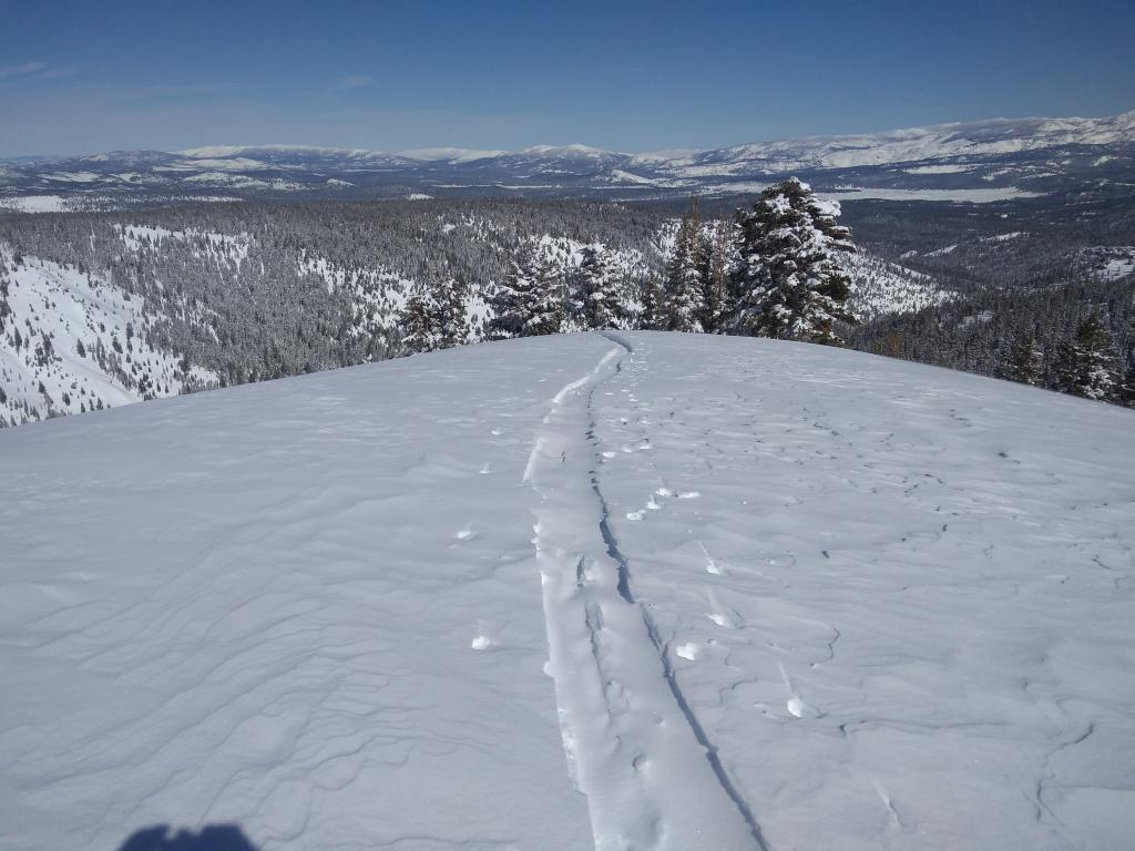 """<a href=""""https://www.sierraavalanchecenter.org/avalanche-terms/skin-track"""" title=""""Backcountry skiers and some snowboarders ascend slopes using climbing skins attached to the bottom of their skis."""" class=""""lexicon-term"""">Skin track</a> refill after about 5 min on top of Deep Creek Peak."""
