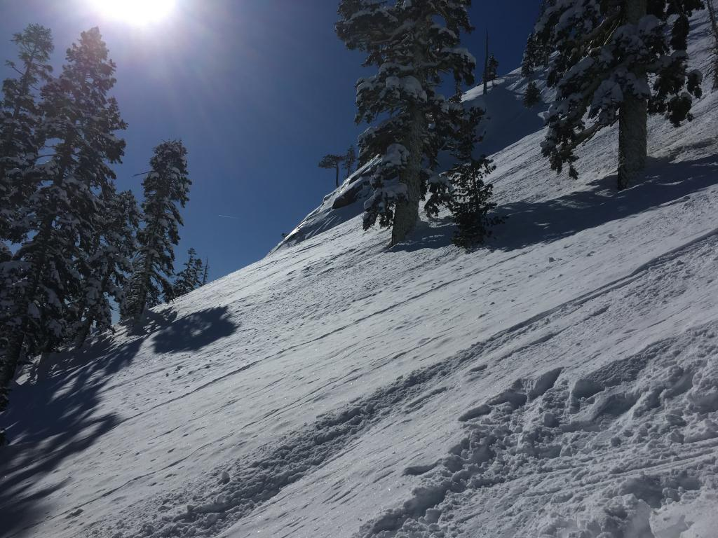 """Interesting evidence of previous <a href=""""https://www.sierraavalanchecenter.org/avalanche-terms/avalanche"""" title=""""A mass of snow sliding, tumbling, or flowing down an inclined surface."""" class=""""lexicon-term"""">avalanche</a> activity."""