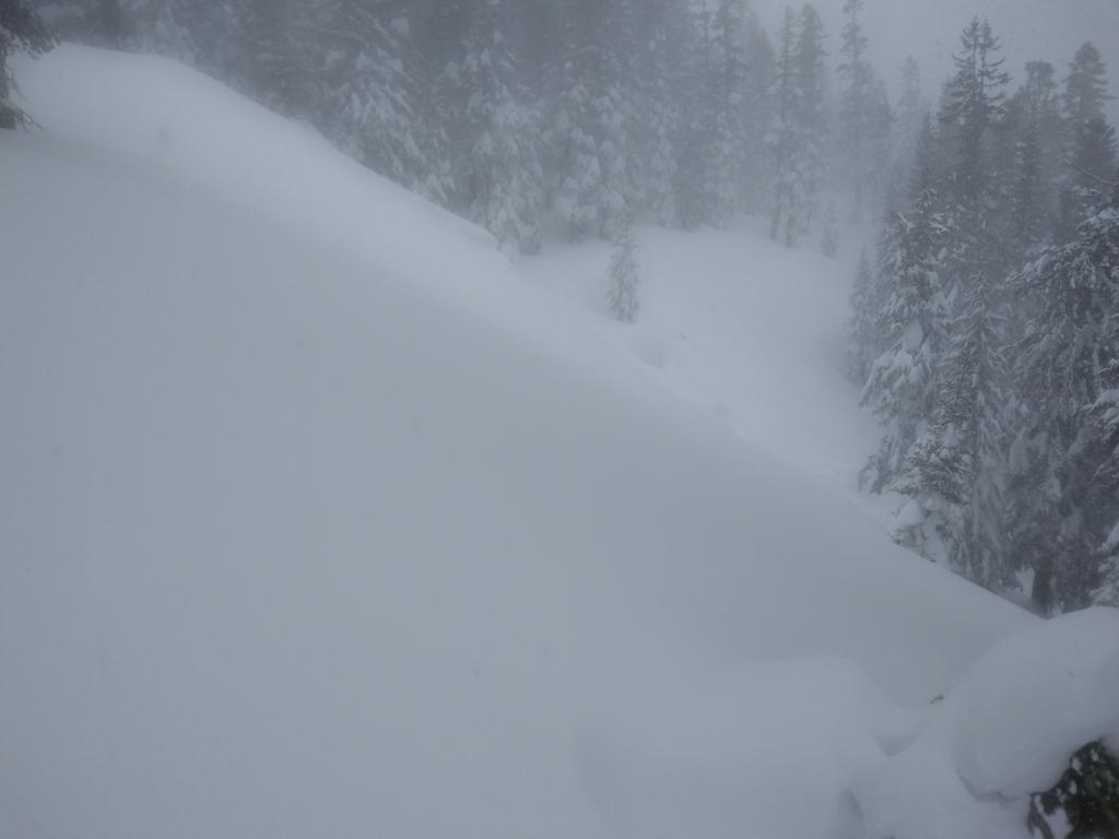 "NE <a href=""https://www.sierraavalanchecenter.org/avalanche-terms/aspect"" title=""The compass direction a slope faces (i.e. North, South, East, or West.)"" class=""lexicon-term"">aspect</a> below treeline with 2 to 3 ft <a href=""https://www.sierraavalanchecenter.org/avalanche-terms/crown-face"" title=""The top fracture surface of a slab avalanche. Usually smooth, clean cut, and angled 90 degrees to the bed surface."" class=""lexicon-term"">crown</a> visible. Slope angle ranged from 32 to 44 degrees."