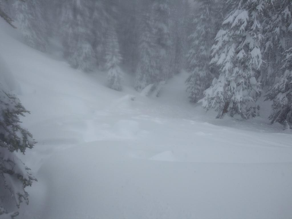 "Skier&#039;s left side of <a href=""https://www.sierraavalanchecenter.org/avalanche-terms/crown-face"" title=""The top fracture surface of a slab avalanche. Usually smooth, clean cut, and angled 90 degrees to the bed surface."" class=""lexicon-term"">crown</a> and debris."