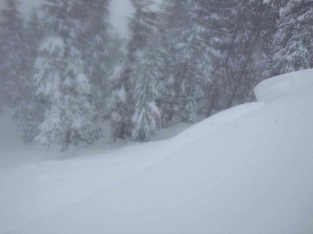 """Skier&#039;s right side of <a href=""""/avalanche-terms/crown-face"""" title=""""The top fracture surface of a slab avalanche. Usually smooth, clean cut, and angled 90 degrees to the bed surface."""" class=""""lexicon-term"""">crown</a> and debris."""