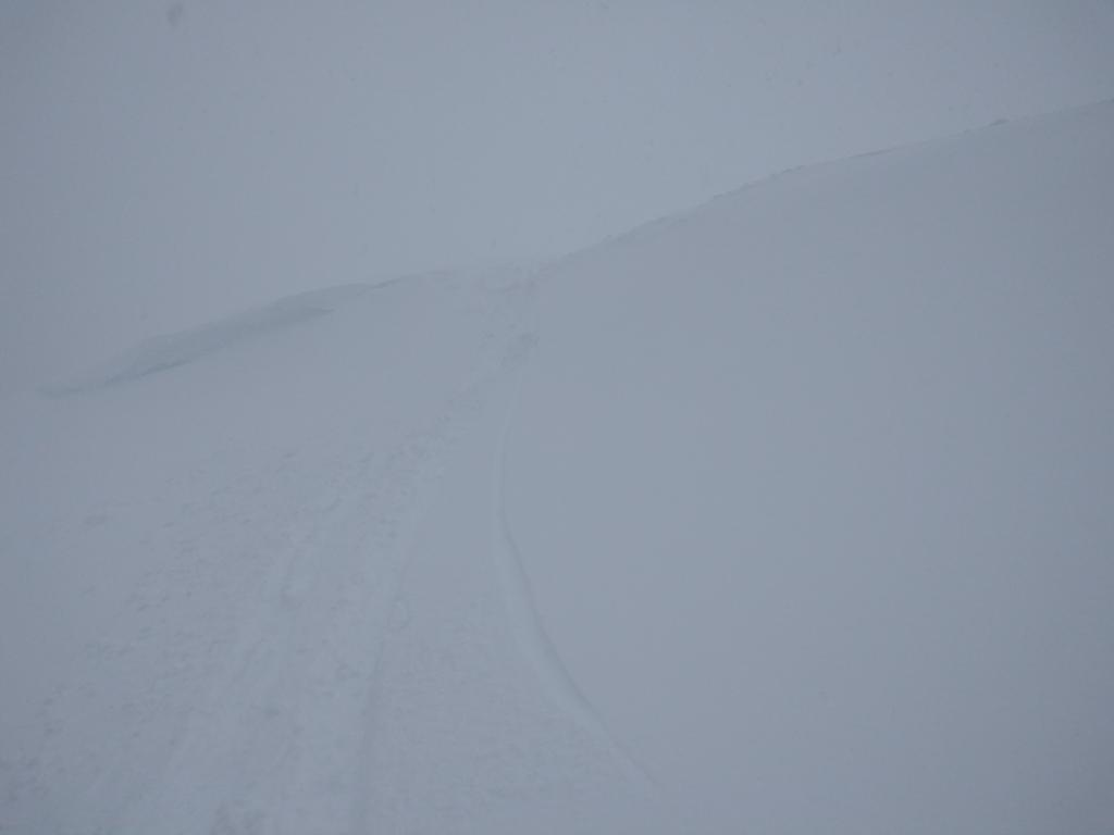 "Ski cuts such as this in <a href=""https://www.sierraavalanchecenter.org/avalanche-terms/wind-loading"" title=""The added weight of wind drifted snow."" class=""lexicon-term"">wind loaded</a> terrain above treeline produced no results."