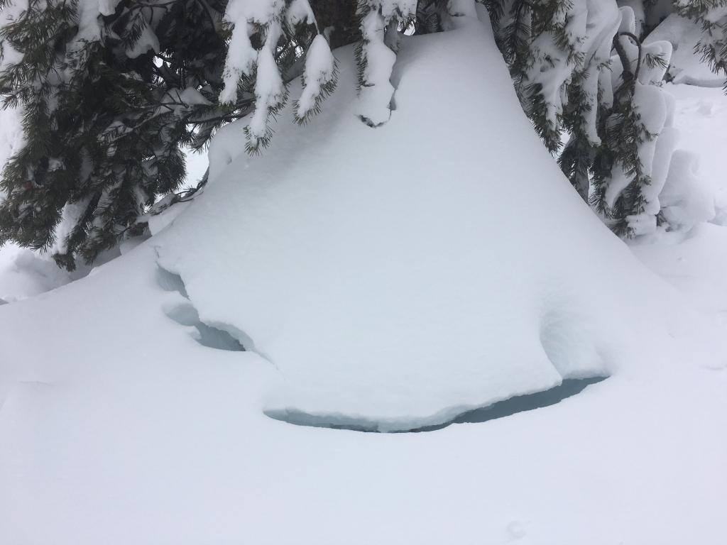 """<a href=""""/avalanche-terms/settlement"""" title=""""The slow, deformation and densification of snow under the influence of gravity. Not to be confused with collasping"""" class=""""lexicon-term"""">Settlement</a> cracks"""