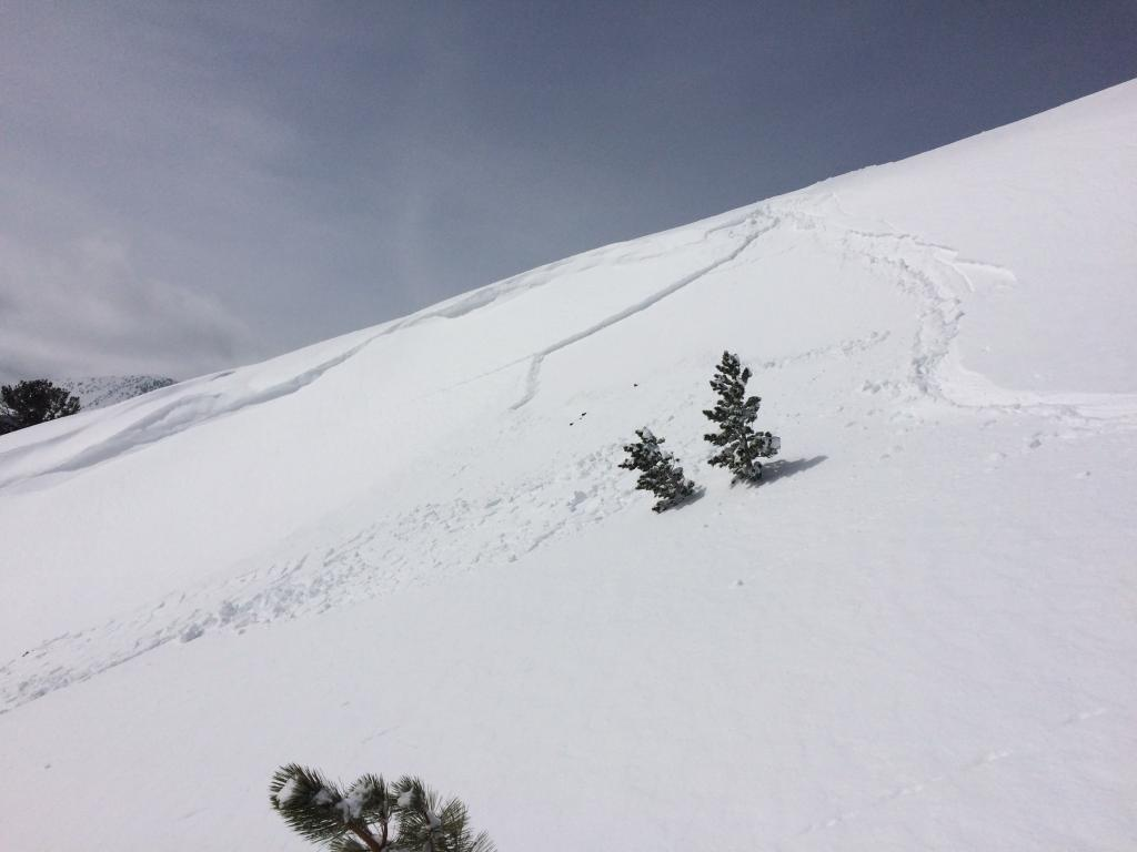 """<a href=""""/avalanche-terms/ski-cut"""" title=""""A stability test where a skier, rider or snowmobiler rapidly crosses an avalanche starting zone to see if an avalanche initiates. Slope cuts can be dangerous and should only be performed by experienced people on small avalanche paths or test slopes."""" class=""""lexicon-term"""">Ski cut</a>"""