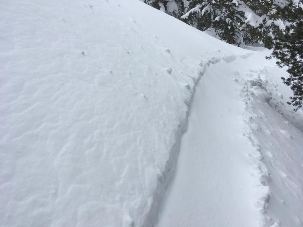 """Freshly wind blown snow mostly covering yesterday&#039;s <a href=""""https://www.sierraavalanchecenter.org/avalanche-terms/skin-track"""" title=""""Backcountry skiers and some snowboarders ascend slopes using climbing skins attached to the bottom of their skis."""" class=""""lexicon-term"""">skin track</a>."""