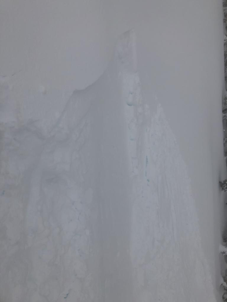 "Left flank of <a href=""https://www.sierraavalanchecenter.org/avalanche-terms/avalanche"" title=""A mass of snow sliding, tumbling, or flowing down an inclined surface."" class=""lexicon-term"">slide</a>"