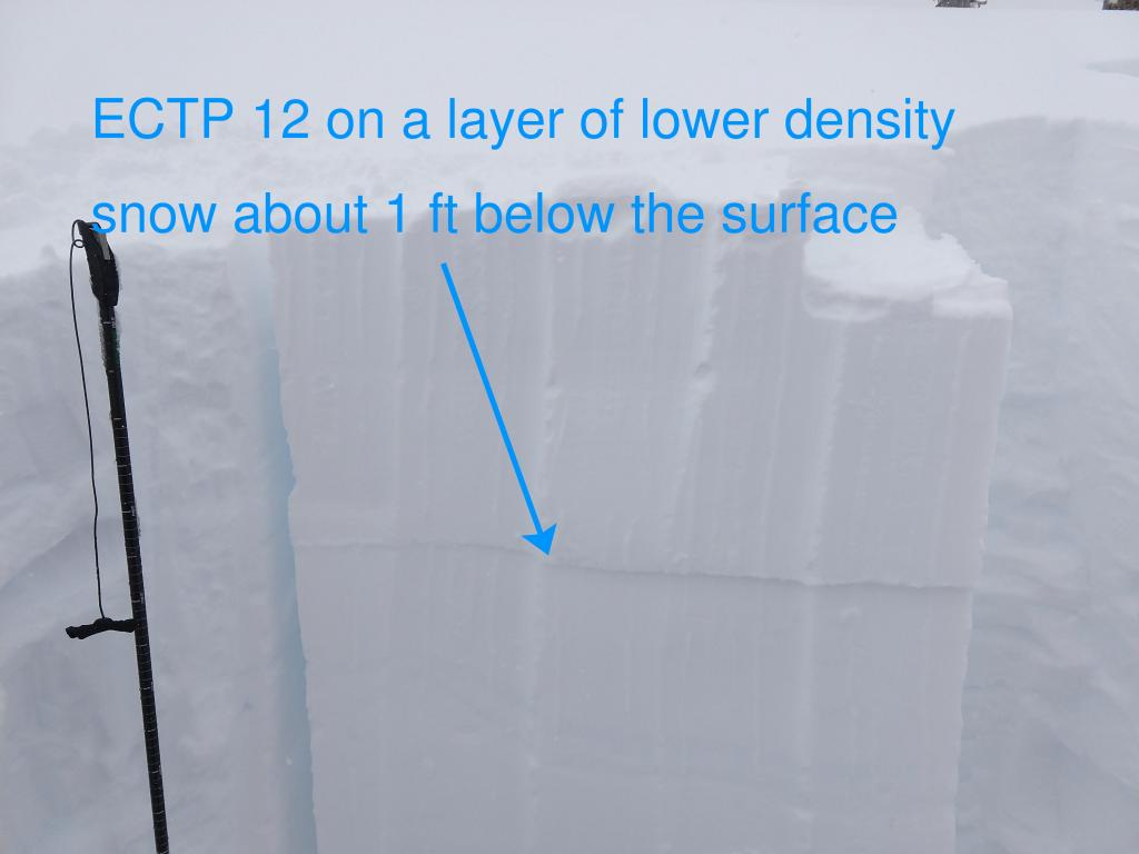 """ECTP on a lower <a href=""""https://www.sierraavalanchecenter.org/avalanche-terms/snow-density"""" title=""""The mass of snow per unit volume, but often expressed as a percent water content. New fallen powder has a low density (3-10%), while heavy or wet snow is more dense (10-20%)."""" class=""""lexicon-term"""">density</a> <a href=""""https://www.sierraavalanchecenter.org/avalanche-terms/snow-layer"""" title=""""A snowpack stratum differentiated from others by weather, metamorphism, or other processes."""" class=""""lexicon-term"""">layer</a> of storm snow on an open near treeline <a href=""""https://www.sierraavalanchecenter.org/avalanche-terms/aspect"""" title=""""The compass direction a slope faces (i.e. North, South, East, or West.)"""" class=""""lexicon-term"""">aspect</a> at 8060 ft."""