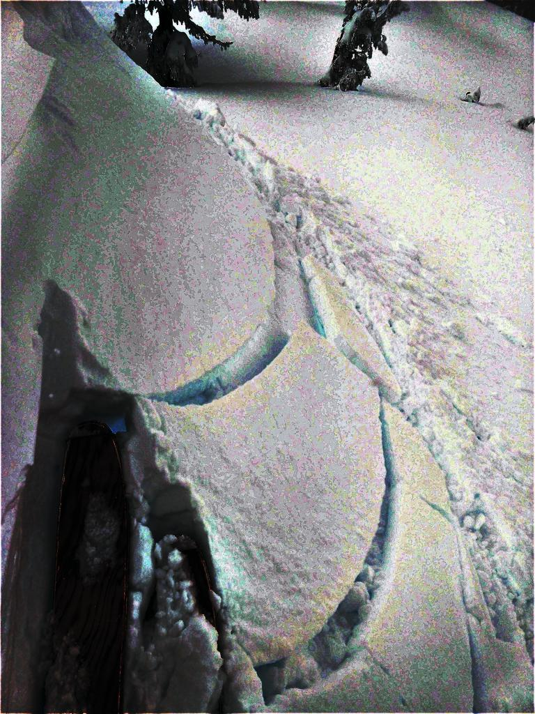 "Ski kicks did not <a href=""https://www.sierraavalanchecenter.org/avalanche-terms/trigger"" title=""A disturbance that initiates fracture within the weak layer causing an avalanche. In 90 percent of avalanche accidents, the victim or someone in the victims party triggers the avalanche."" class=""lexicon-term"">trigger</a> any cracking on this test slope until it was undercut. Then ski kicks could <a href=""https://www.sierraavalanchecenter.org/avalanche-terms/trigger"" title=""A disturbance that initiates fracture within the weak layer causing an avalanche. In 90 percent of avalanche accidents, the victim or someone in the victims party triggers the avalanche."" class=""lexicon-term"">trigger</a> shooting cracks."