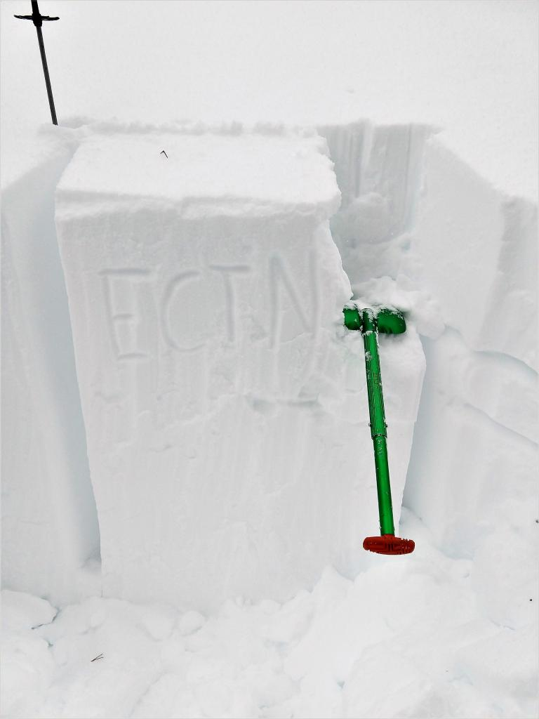 """A Test <a href=""""/avalanche-terms/snowpit"""" title=""""A pit dug vertically into the snowpack where snow layering is observed and stability tests may be performed. Also called a snow profile."""" class=""""lexicon-term"""">pit</a> from a N <a href=""""/avalanche-terms/aspect"""" title=""""The compass direction a slope faces (i.e. North, South, East, or West.)"""" class=""""lexicon-term"""">aspect</a> below treeline slope sheltered from the wind. Tests did not show signs of instability."""
