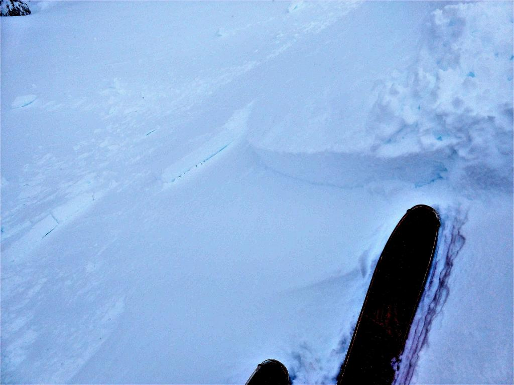 """A <a href=""""/avalanche-terms/ski-cut"""" title=""""A stability test where a skier, rider or snowmobiler rapidly crosses an avalanche starting zone to see if an avalanche initiates. Slope cuts can be dangerous and should only be performed by experienced people on small avalanche paths or test slopes."""" class=""""lexicon-term"""">ski cut</a> on this ridgeline test slope <a href=""""/avalanche-terms/trigger"""" title=""""A disturbance that initiates fracture within the weak layer causing an avalanche. In 90 percent of avalanche accidents, the victim or someone in the victims party triggers the avalanche."""" class=""""lexicon-term"""">triggered</a> a ~8-12 inch deep <a href=""""/avalanche-terms/wind-slab"""" title=""""A cohesive layer of snow formed when wind deposits snow onto leeward terrain. Wind slabs are often smooth and rounded and sometimes sound hollow."""" class=""""lexicon-term"""">wind slab</a>"""