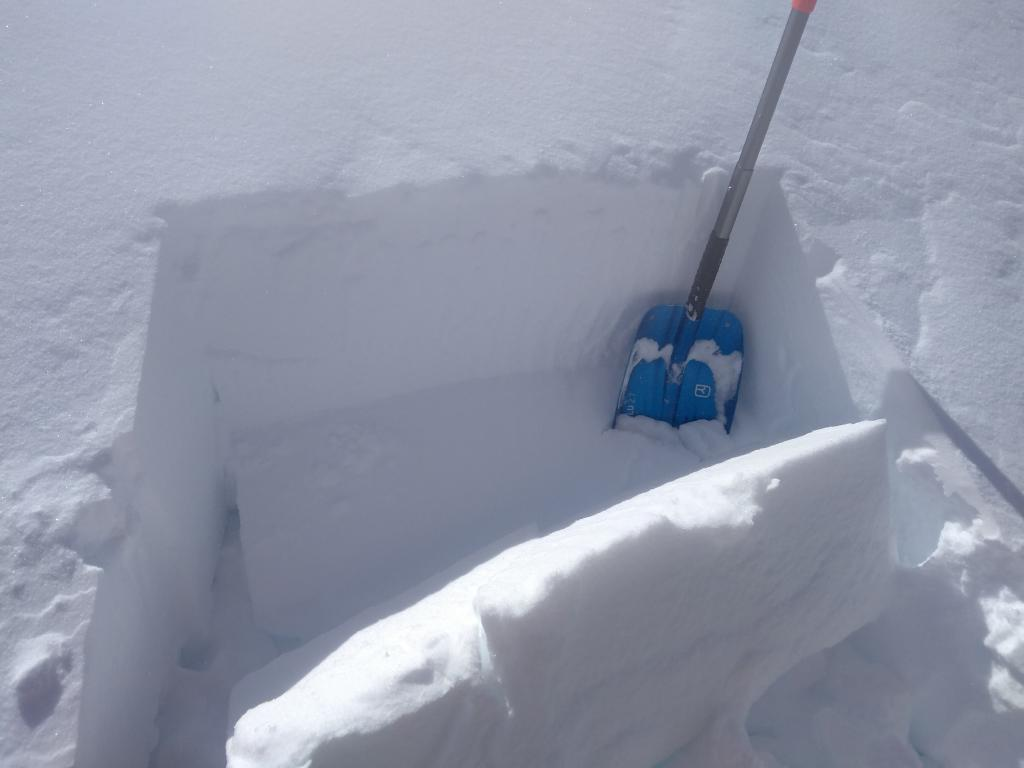 """ECTP-25 on <a href=""""https://www.sierraavalanchecenter.org/avalanche-terms/wind-slab"""" title=""""A cohesive layer of snow formed when wind deposits snow onto leeward terrain. Wind slabs are often smooth and rounded and sometimes sound hollow."""" class=""""lexicon-term"""">wind slab</a> down 1.5 ft, 1F hard over 4F hard."""