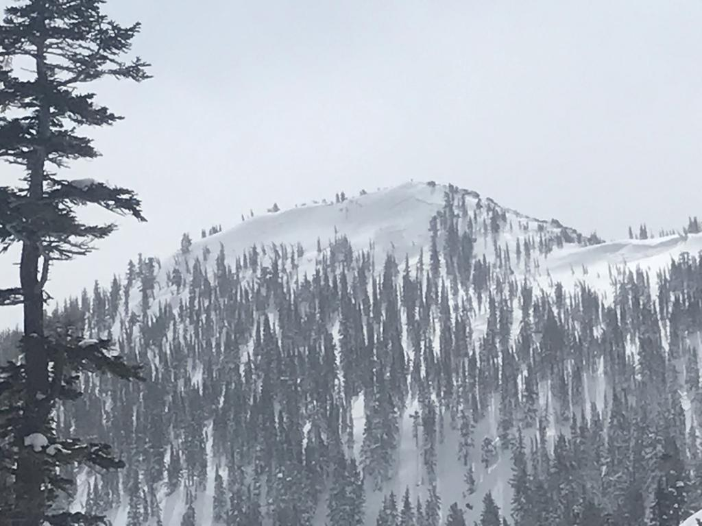 "Jake's Peak <a href=""https://www.sierraavalanchecenter.org/avalanche-terms/wind-slab"" title=""A cohesive layer of snow formed when wind deposits snow onto leeward terrain. Wind slabs are often smooth and rounded and sometimes sound hollow."" class=""lexicon-term"">wind slab</a> on N <a href=""https://www.sierraavalanchecenter.org/avalanche-terms/aspect"" title=""The compass direction a slope faces (i.e. North, South, East, or West.)"" class=""lexicon-term"">aspect</a>"