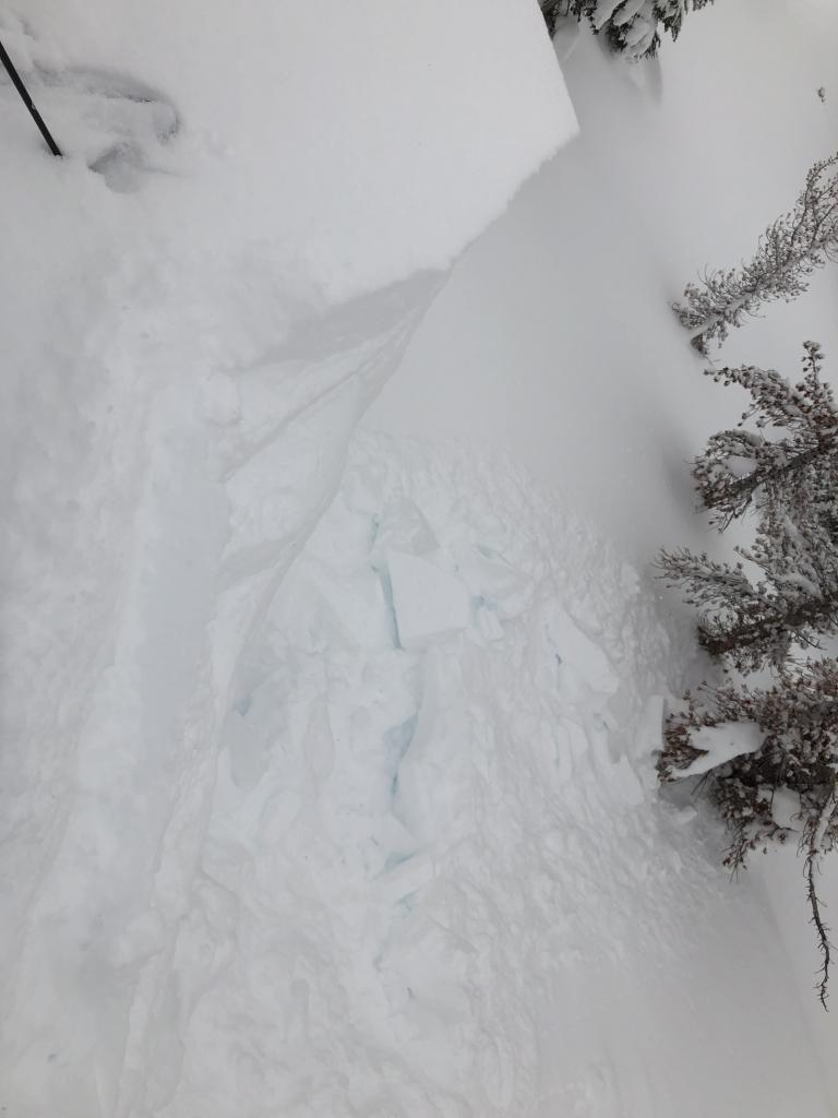 """2-3 foot cornices would <a href=""""https://www.sierraavalanchecenter.org/avalanche-terms/collapse"""" title=""""When the fracture of a lower snow layer causes an upper layer to fall. Also called a whumpf, this is an obvious sign of instability."""" class=""""lexicon-term"""">collapse</a> with a few kicks"""