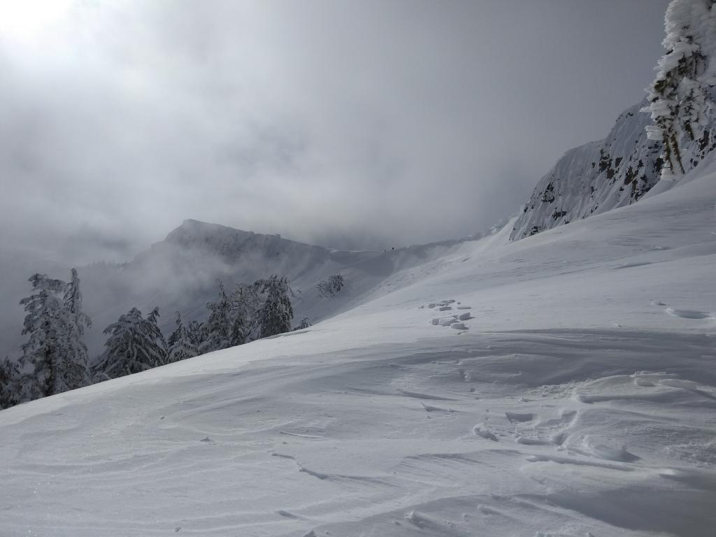 "<a href=""https://www.sierraavalanchecenter.org/avalanche-terms/wind-slab"" title=""A cohesive layer of snow formed when wind deposits snow onto leeward terrain. Wind slabs are often smooth and rounded and sometimes sound hollow."" class=""lexicon-term"">Wind slab</a> <a href=""https://www.sierraavalanchecenter.org/avalanche-terms/avalanche"" title=""A mass of snow sliding, tumbling, or flowing down an inclined surface."" class=""lexicon-term"">avalanche</a> size <a href=""https://www.sierraavalanchecenter.org/avalanche-terms/d1"" title=""Relatively harmless to people."" class=""lexicon-term"">D1</a> on NE <a href=""https://www.sierraavalanchecenter.org/avalanche-terms/aspect"" title=""The compass direction a slope faces (i.e. North, South, East, or West.)"" class=""lexicon-term"">aspects</a> <a href=""https://www.sierraavalanchecenter.org/avalanche-terms/trigger"" title=""A disturbance that initiates fracture within the weak layer causing an avalanche. In 90 percent of avalanche accidents, the victim or someone in the victims party triggers the avalanche."" class=""lexicon-term"">triggered</a> by intentional <a href=""https://www.sierraavalanchecenter.org/avalanche-terms/cornice"" title=""A mass of snow deposited by the wind, often overhanging, and usually near a sharp terrain break such as a ridge. Cornices can break off unexpectedly and should be approached with caution."" class=""lexicon-term"">cornice</a> <a href=""https://www.sierraavalanchecenter.org/avalanche-terms/collapse"" title=""When the fracture of a lower snow layer causes an upper layer to fall. Also called a whumpf, this is an obvious sign of instability."" class=""lexicon-term"">collapse</a>."