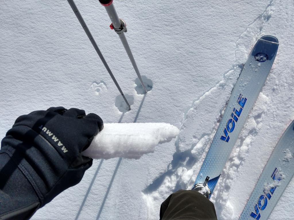"""Variable <a href=""""https://www.sierraavalanchecenter.org/avalanche-terms/sun-crust"""" title=""""A snow layer melted by radiation from the sun and subsequently refrozen."""" class=""""lexicon-term"""">sun crust</a> on a westerly <a href=""""https://www.sierraavalanchecenter.org/avalanche-terms/aspect"""" title=""""The compass direction a slope faces (i.e. North, South, East, or West.)"""" class=""""lexicon-term"""">aspect</a>."""