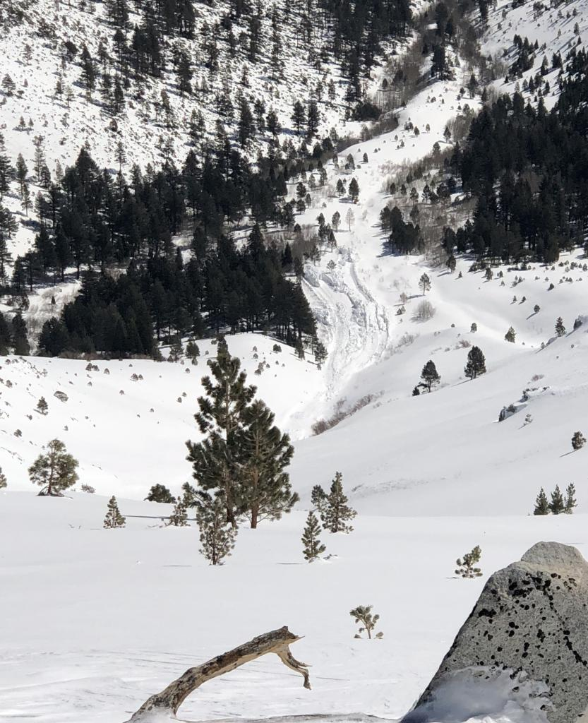 "wet debris visible in <a href=""https://www.sierraavalanchecenter.org/avalanche-terms/runout-zone"" title=""The portion of an avalanche path where the debris typically comes to rest."" class=""lexicon-term"">runout</a>"