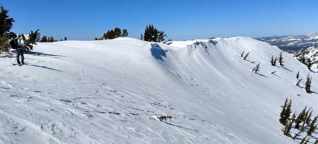 "NE <a href=""https://www.sierraavalanchecenter.org/avalanche-terms/aspect"" title=""The compass direction a slope faces (i.e. North, South, East, or West.)"" class=""lexicon-term"">aspect</a> side of summit ridge."