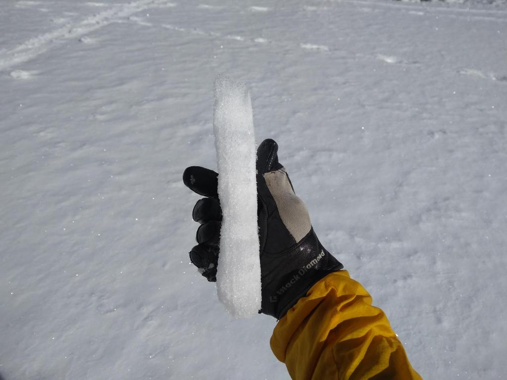 Thin melt freeze crust over dry snow on flat terrain at 8,350'.