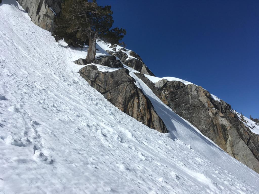 """Many steep sunny slopes had evidence of recent previous loose wet <a href=""""https://www.sierraavalanchecenter.org/avalanche-terms/avalanche"""" title=""""A mass of snow sliding, tumbling, or flowing down an inclined surface."""" class=""""lexicon-term"""">avalanche</a> activity."""