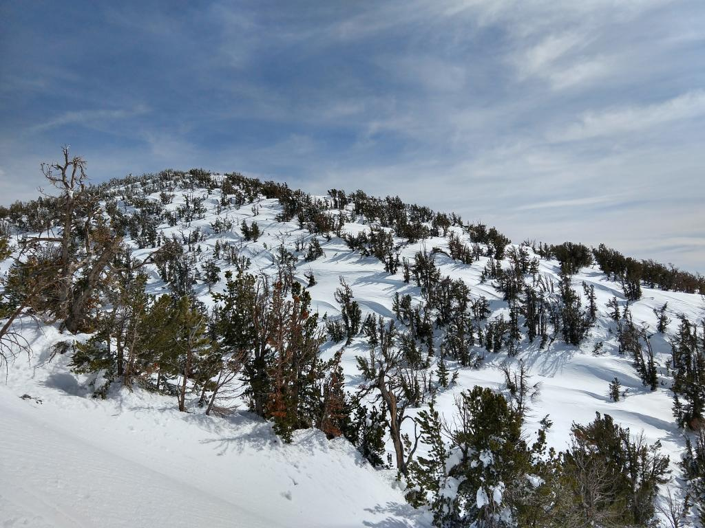 "Wind affected snow on a N - NW <a href=""/avalanche-terms/aspect"" title=""The compass direction a slope faces (i.e. North, South, East, or West.)"" class=""lexicon-term"">aspect</a> at around 9400 ft."