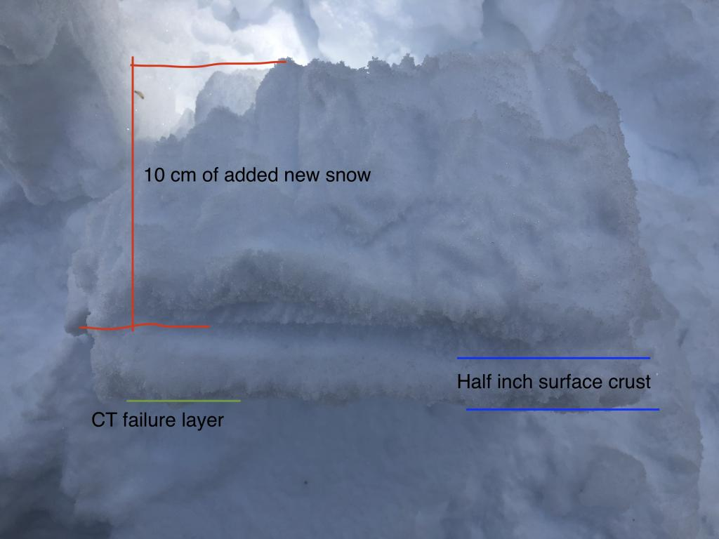 """Photo of the compression test failure we saw in the artificially <a href=""""https://www.sierraavalanchecenter.org/avalanche-terms/loading"""" title=""""The addition of weight on top of a snowpack, usually from precipitation, wind drifting, or a person."""" class=""""lexicon-term"""">loaded</a> tests on a shade N <a href=""""https://www.sierraavalanchecenter.org/avalanche-terms/aspect"""" title=""""The compass direction a slope faces (i.e. North, South, East, or West.)"""" class=""""lexicon-term"""">aspect</a>."""