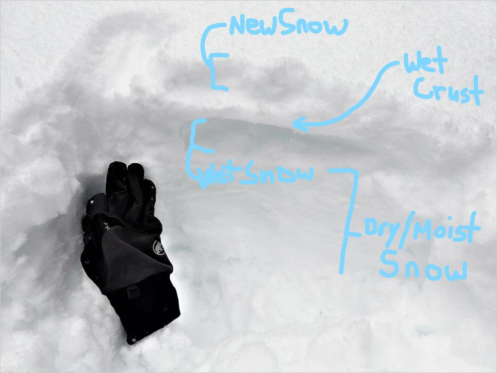 "Upper snowpack at around 8000 ft. on an E <a href=""https://www.sierraavalanchecenter.org/avalanche-terms/aspect"" title=""The compass direction a slope faces (i.e. North, South, East, or West.)"" class=""lexicon-term"">aspect</a> on Rubicon"