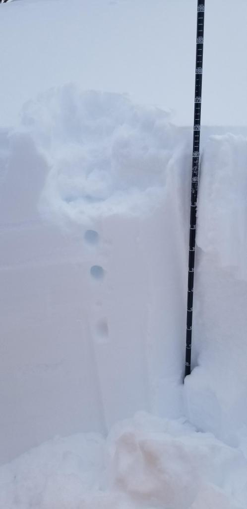 15cm of fist hardness storm snow on top of 20cm of 1F snow, under that pencil hardness.