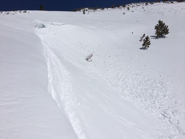 """Small skier <a href=""""https://www.sierraavalanchecenter.org/avalanche-terms/trigger"""" title=""""A disturbance that initiates fracture within the weak layer causing an avalanche. In 90 percent of avalanche accidents, the victim or someone in the victims party triggers the avalanche."""" class=""""lexicon-term"""">triggered</a> <a href=""""https://www.sierraavalanchecenter.org/avalanche-terms/wind-slab"""" title=""""A cohesive layer of snow formed when wind deposits snow onto leeward terrain. Wind slabs are often smooth and rounded and sometimes sound hollow."""" class=""""lexicon-term"""">wind slab</a> with loose wet characteristics.  8600&#039;, south <a href=""""https://www.sierraavalanchecenter.org/avalanche-terms/aspect"""" title=""""The compass direction a slope faces (i.e. North, South, East, or West.)"""" class=""""lexicon-term"""">aspect</a>, at 11:45am."""