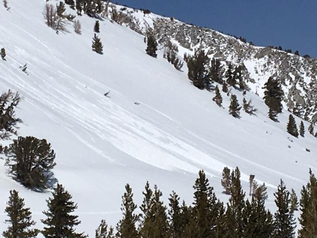"""Small loose wet <a href=""""https://www.sierraavalanchecenter.org/avalanche-terms/avalanche"""" title=""""A mass of snow sliding, tumbling, or flowing down an inclined surface."""" class=""""lexicon-term"""">avalanches</a> on Fireplug.  E/SE <a href=""""https://www.sierraavalanchecenter.org/avalanche-terms/aspect"""" title=""""The compass direction a slope faces (i.e. North, South, East, or West.)"""" class=""""lexicon-term"""">aspect</a>, 9200&#039;, 11am."""